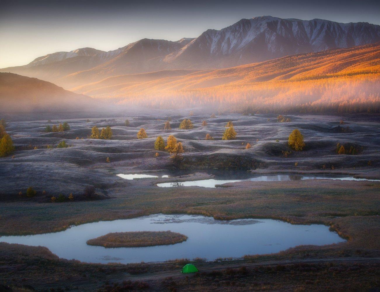 алтай, горы, осень, курай, Владимир Ляпин