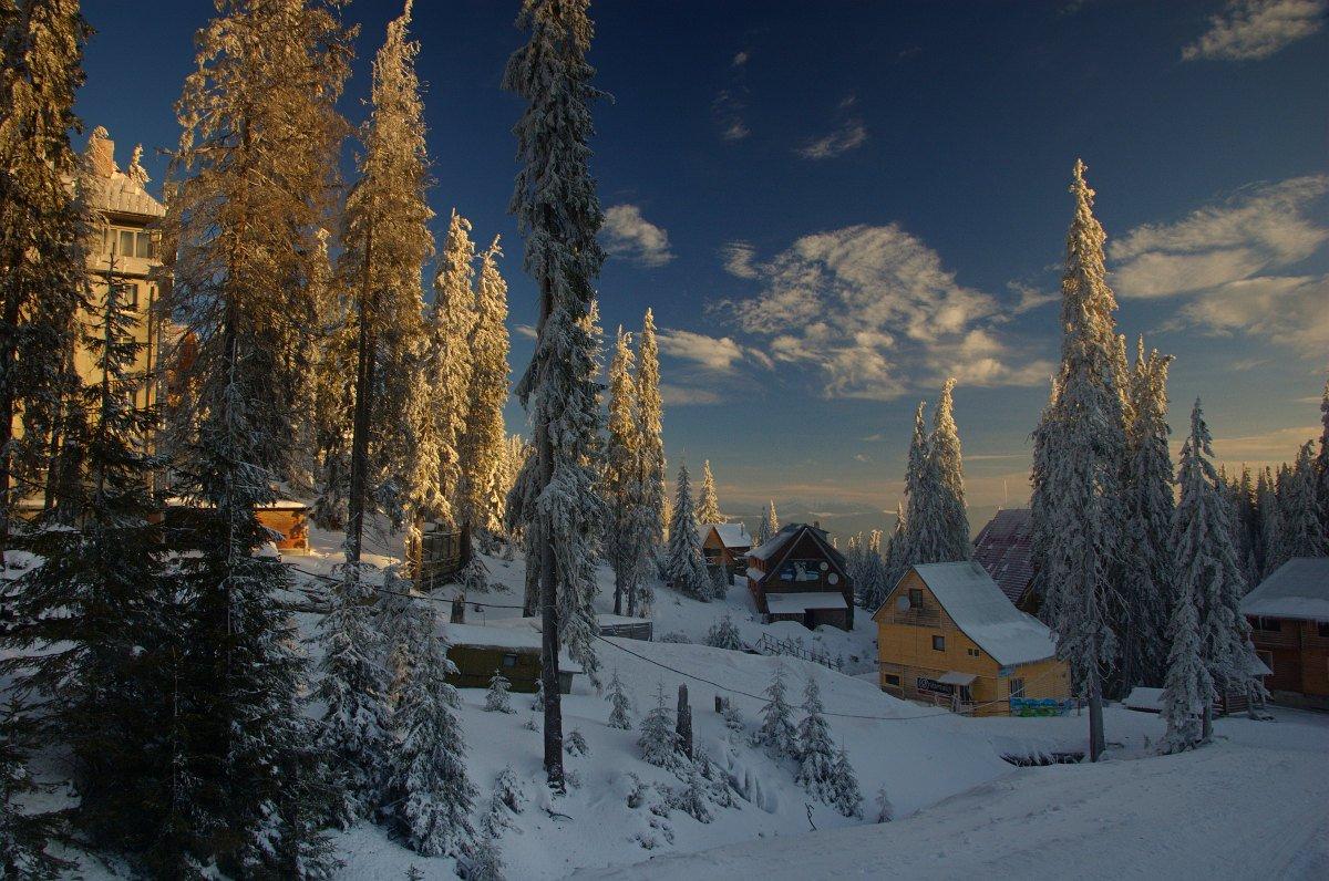 горы, карпаты, зима, утро, снег, Евгений Смердов