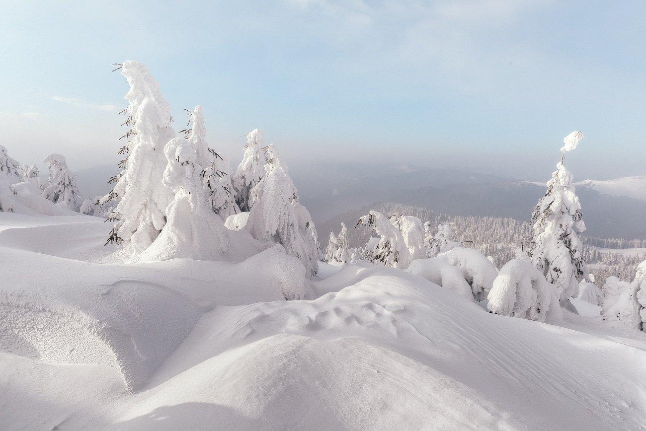 карпаты, зима, пейзаж, рассвет, горы, carpathians, mountains, Иван Кмить