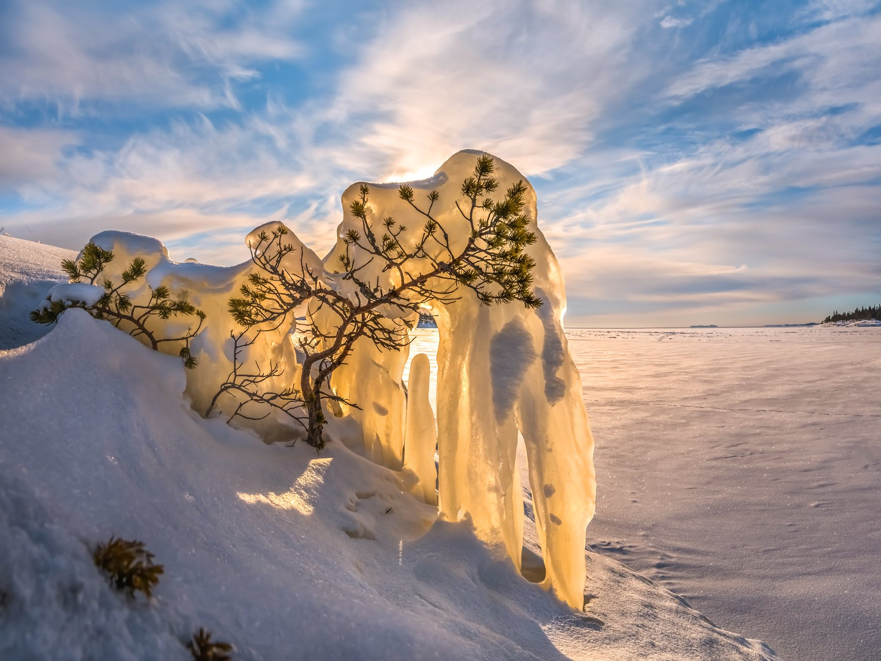 ладожское озеро, карелия, остров, зима, снег, лёд, сосна, наледь, солнце, дерево, pentax645z, pentaxrussia, pentax, Лашков Фёдор