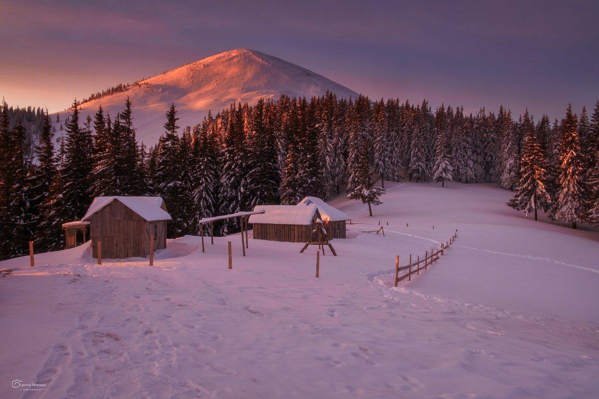 snow., mountain, .glacier.evergreen, .snowfall., ridge, .snowy., slope, .mountain., peak., mountain., range., snowcapped., mt, foraker., Leonid