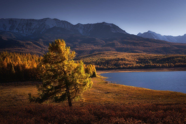 алтай, горы, осень, караколь, Владимир Ляпин