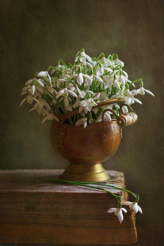 весна, подснежники, натюрморт, spring, snowdrops, still life, Anyuta Gillespie