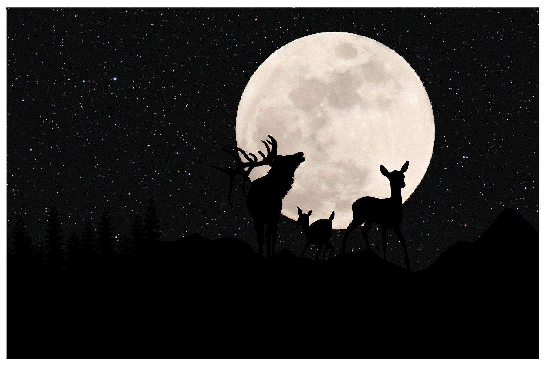 олень, луна, природа, ночь, горы, Sergii Vidov