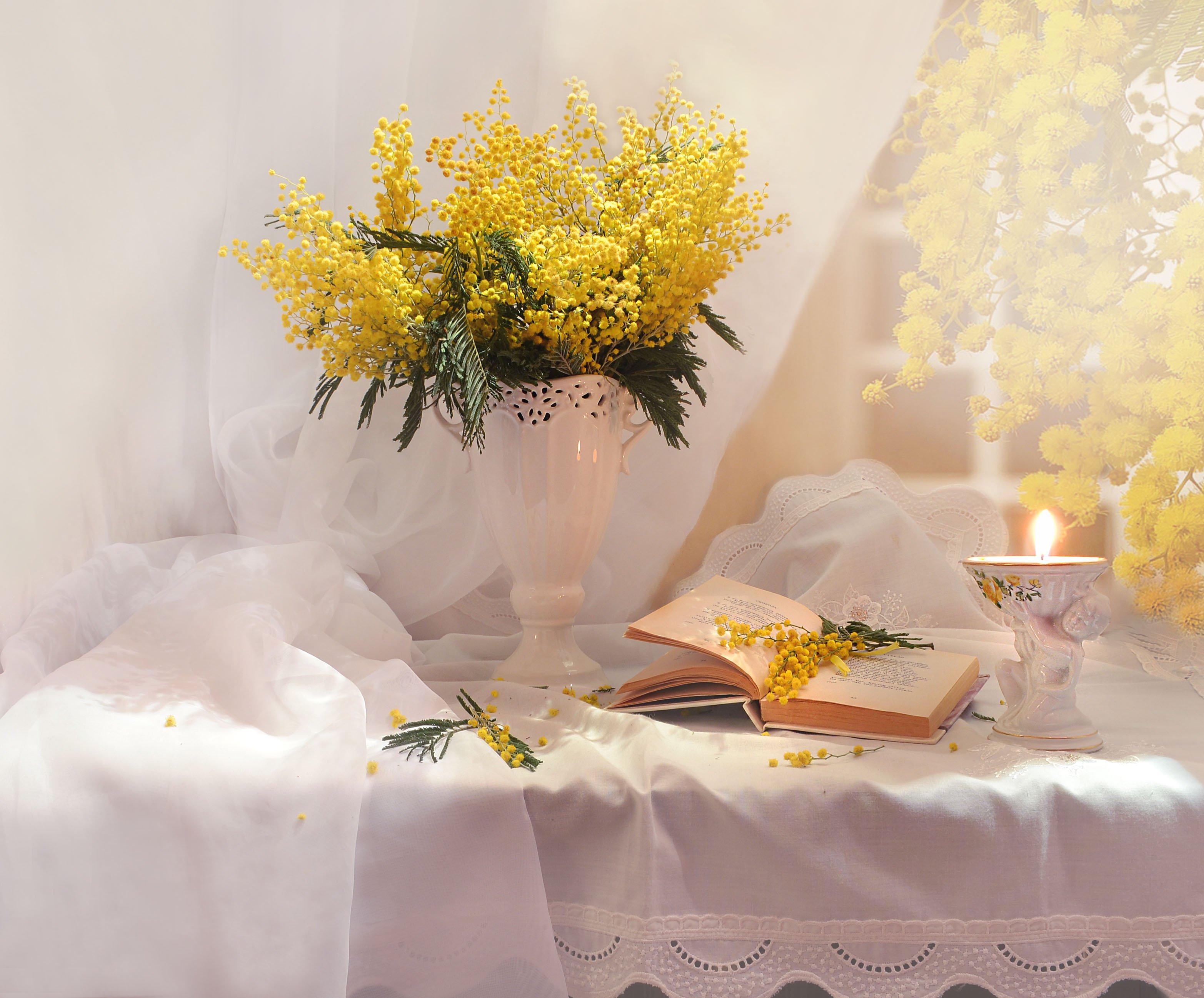 still life, натюрморт, мимоза, цветы, весна, март, книга, стихи, подсвечник, свеча, Колова Валентина