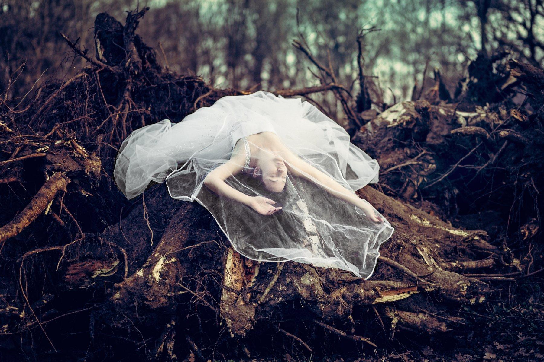 девушка лес корни концепция , Вероника Гергерт