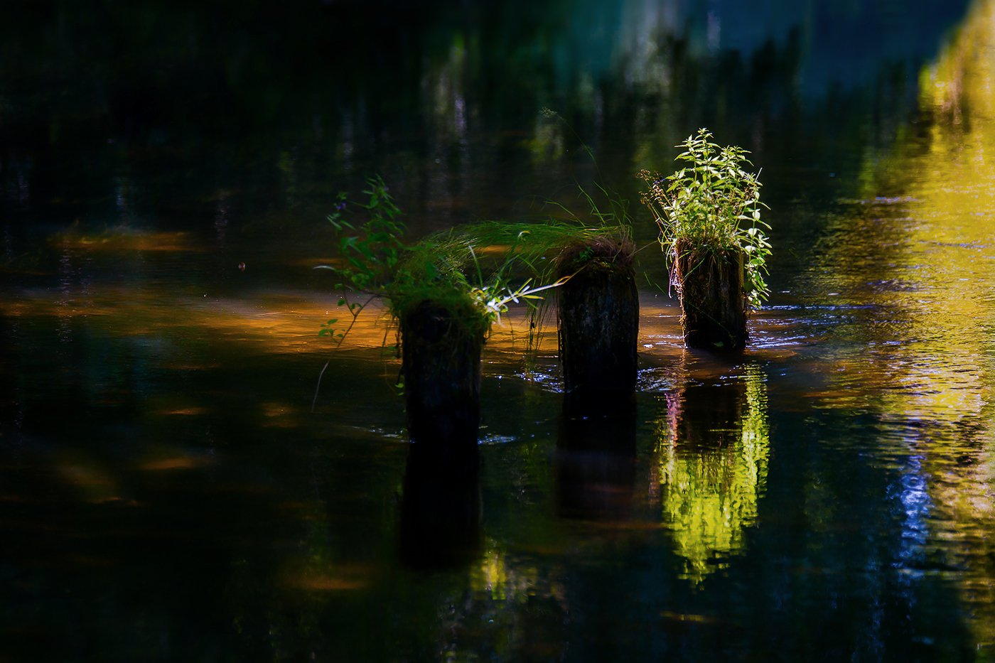 , Marian Lubawski Travel Photography