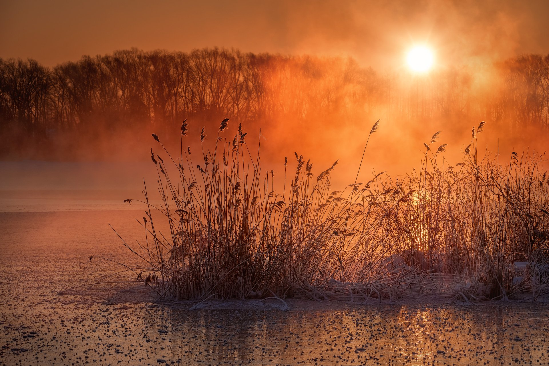 пейзаж, зима, озеро, лед, снег, утро, рассвет, восход, мороз, холод, шатура, Андрей Чиж