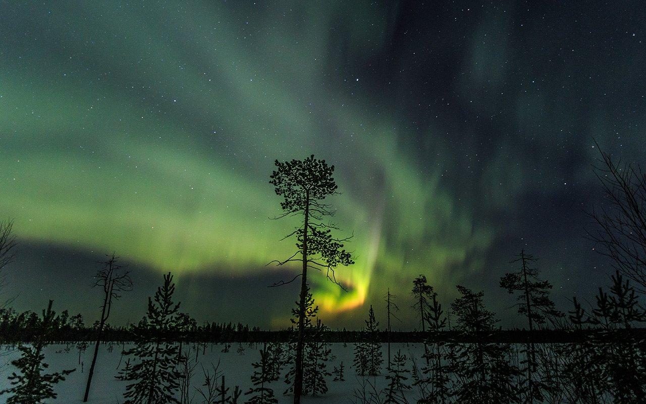 северное сияние,ночь,природа,коми,север, Игорь Триер