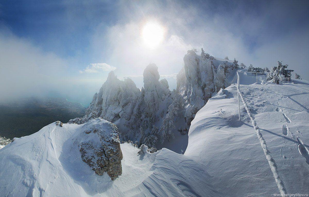 крым, ялта, зима, снег, ай-петри, фотограф крым, фотограф ялта, пейзажи крыма, сосна, дерево, туман, Сергей Титов
