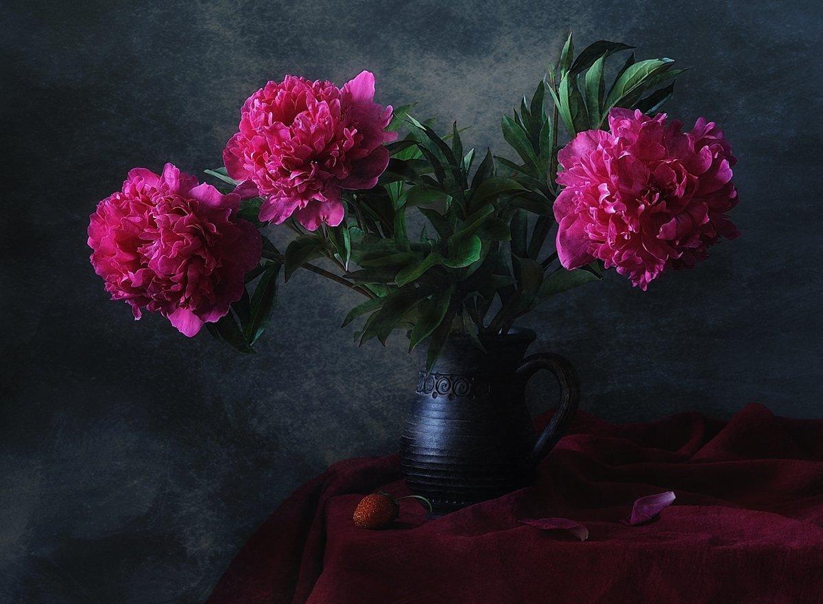 натюрморт,цветы,пионы, Наталия
