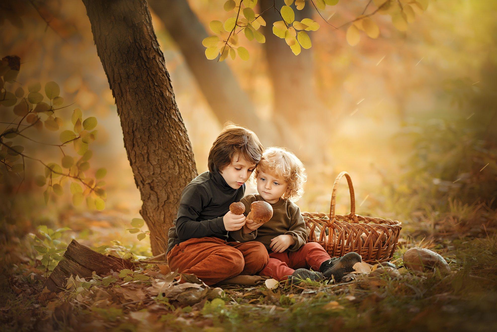 мальчики, дети, братья, осень, грибники, грибы, листва, корзина, Ярослава Громова