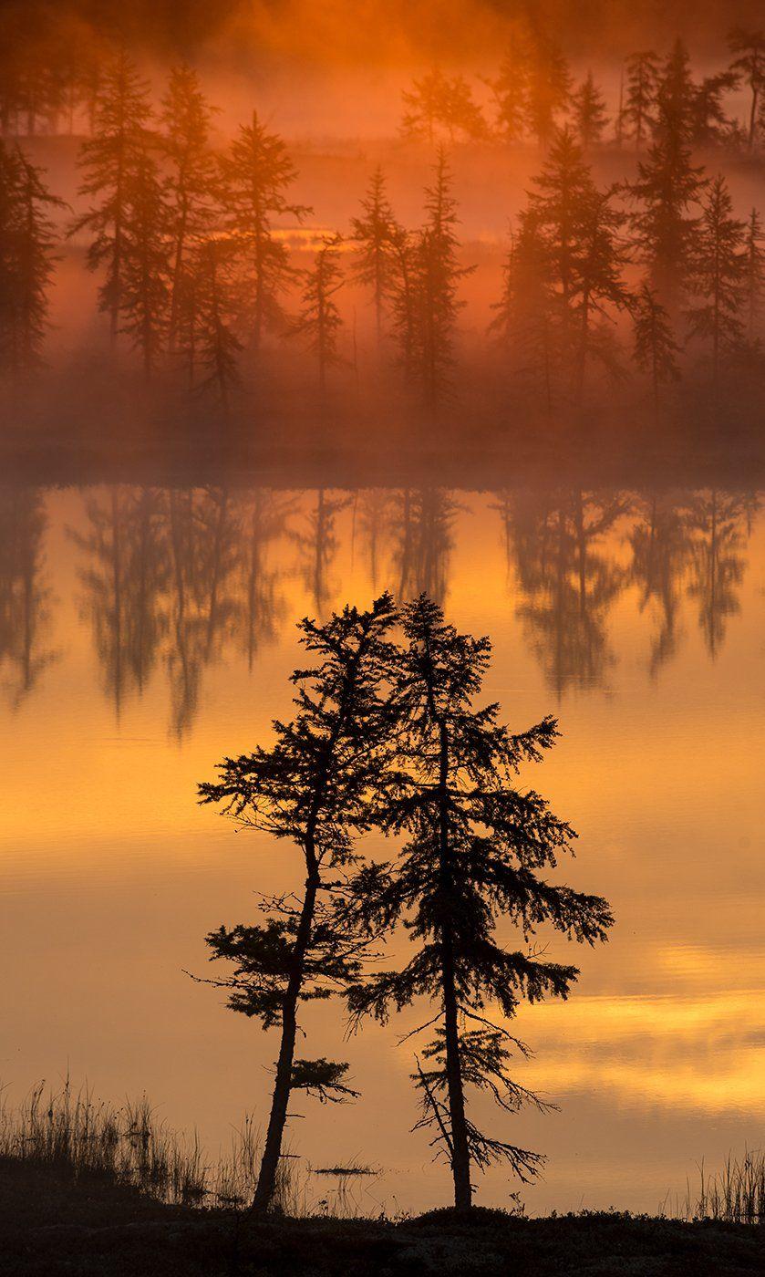 рассвет, туман, природа, Андрей Снегирёв