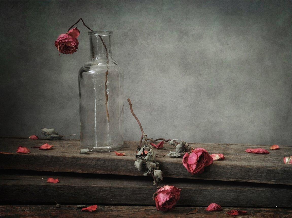 натюрморт,розы, Наталия К