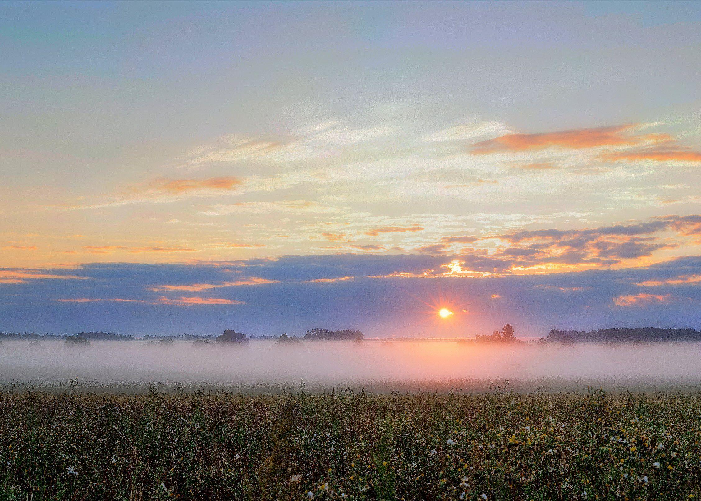 лето, поле, пейзаж, небо, туман, природа, россия, деревня, солнце, новая романовка, Павел Ныриков