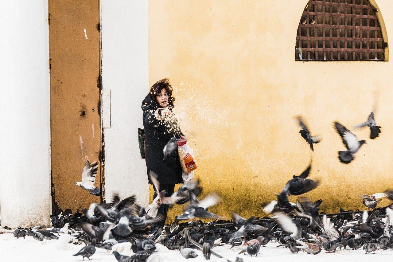 Люди, город, улица, жанр, человек, птицы, голуби, зима,  , АлександрТутаев
