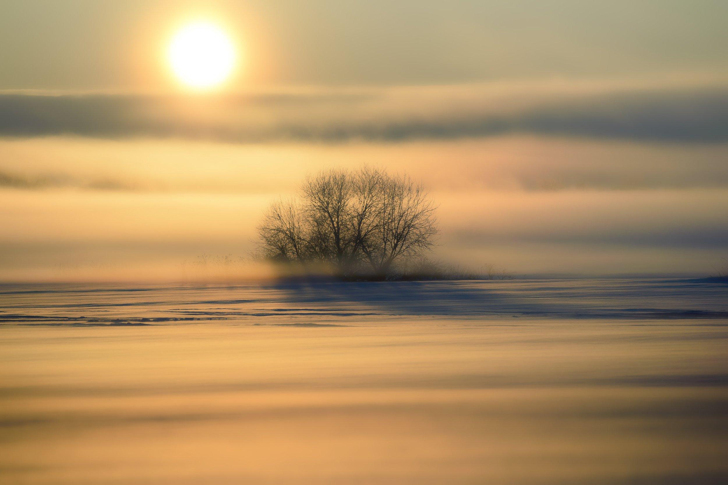 утро, восход, мороз, туман, Владимир Штыриков