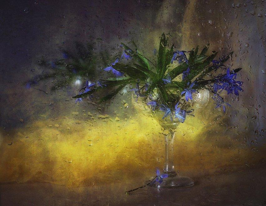 натюрморт,весна,первоцветы,капли, Наталия К