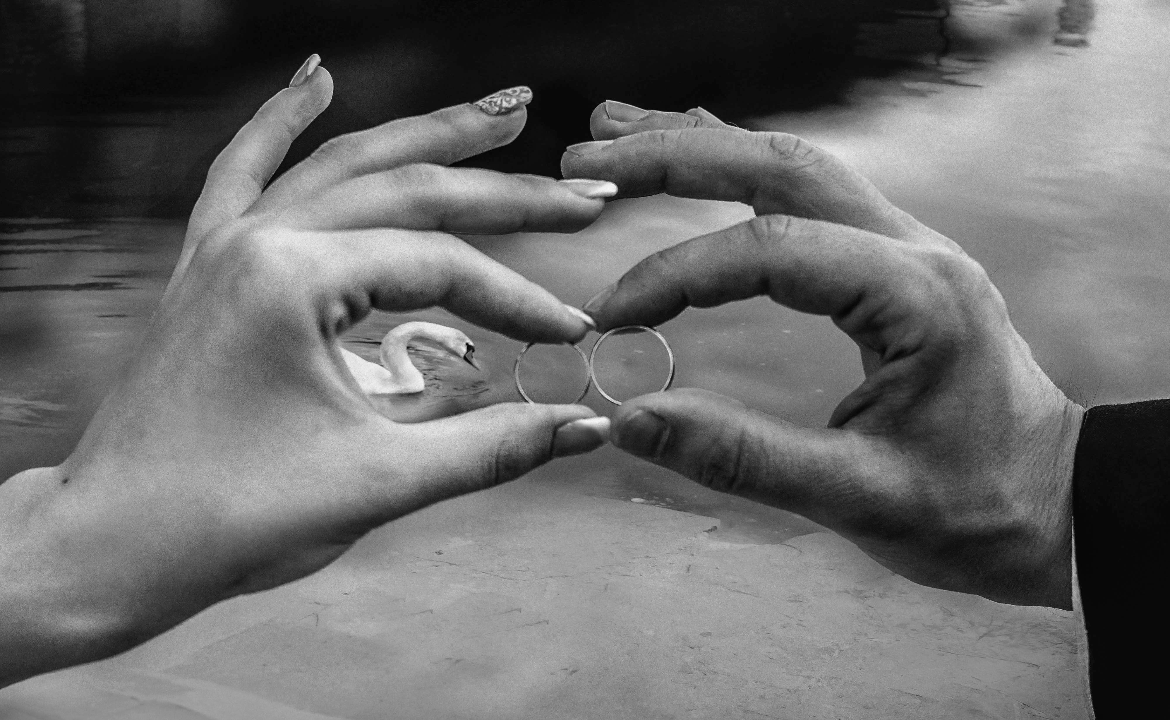 свадьба,кольца,лебедь, Budanova Mary