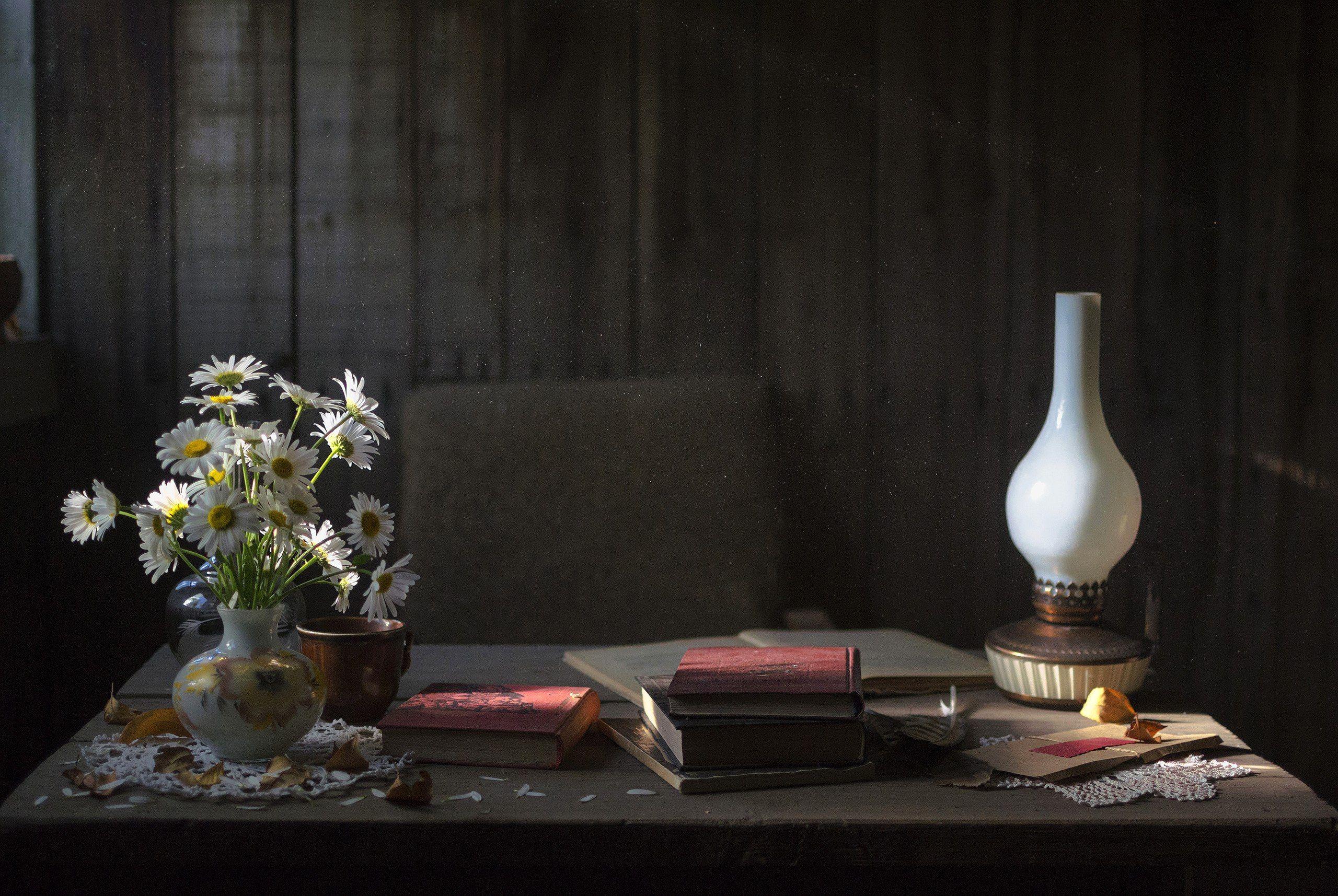 стол, лампа, цветы, свет, вечер, дом, пыль, книги, Логачёв Илья