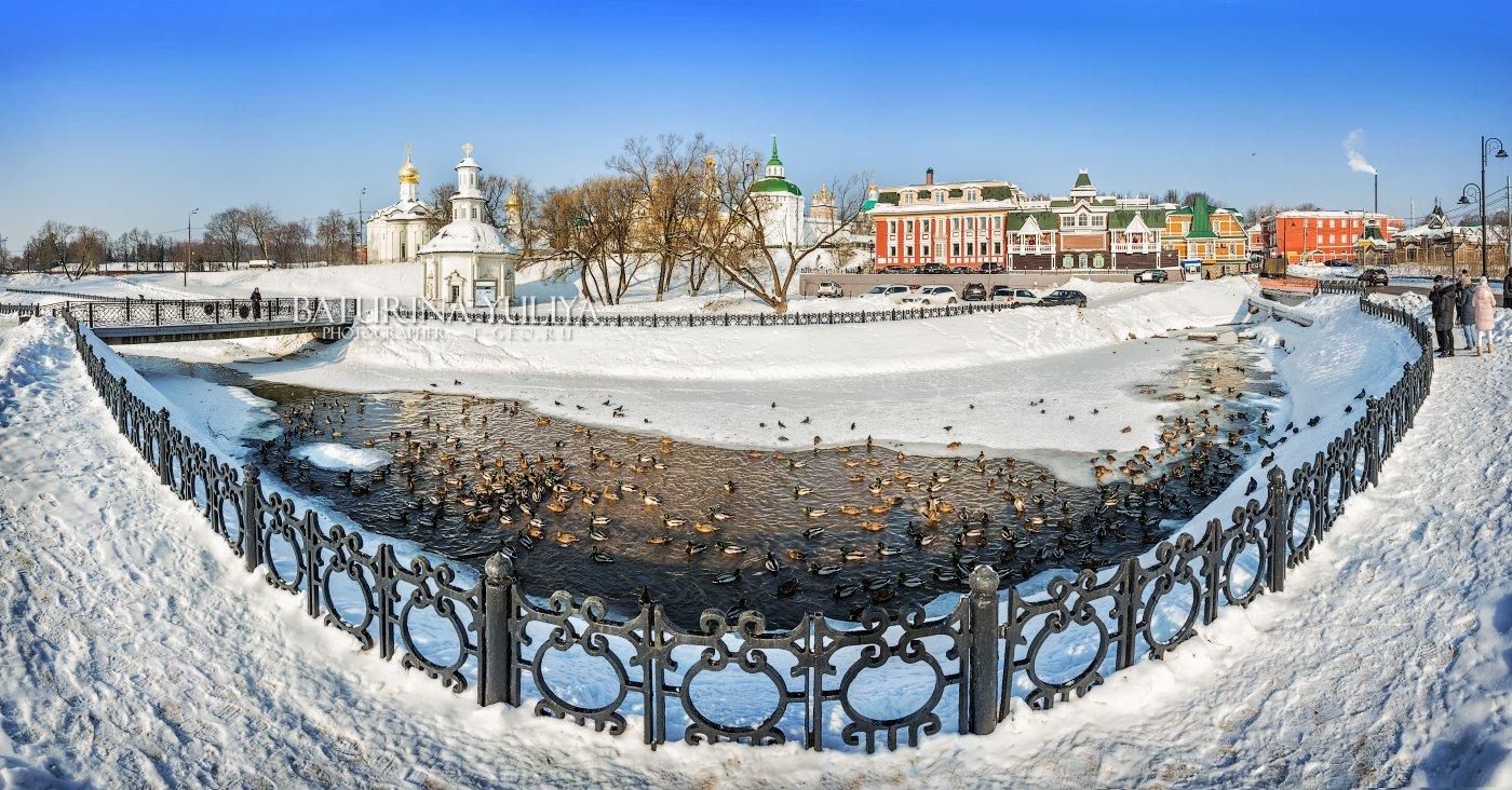 сергиев посад, река, лавра, часовня, утка, Юлия Батурина
