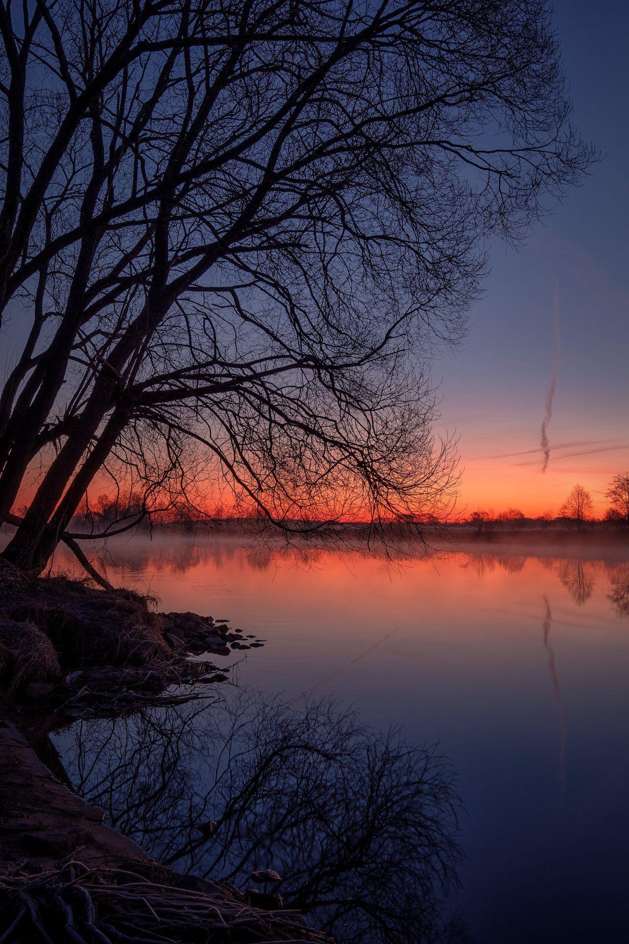 пейзаж, дубна, весна, апрель, разлив, рассвет, утро, дерево, река, туман, Андрей Чиж