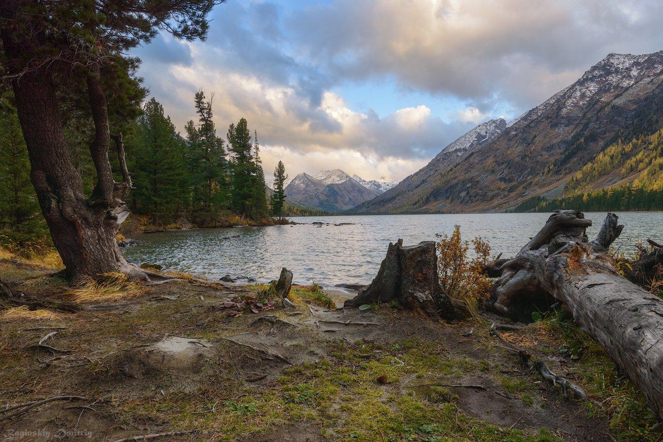 алтай, осень, озеро, горы, Dmitriy  Baginskiy