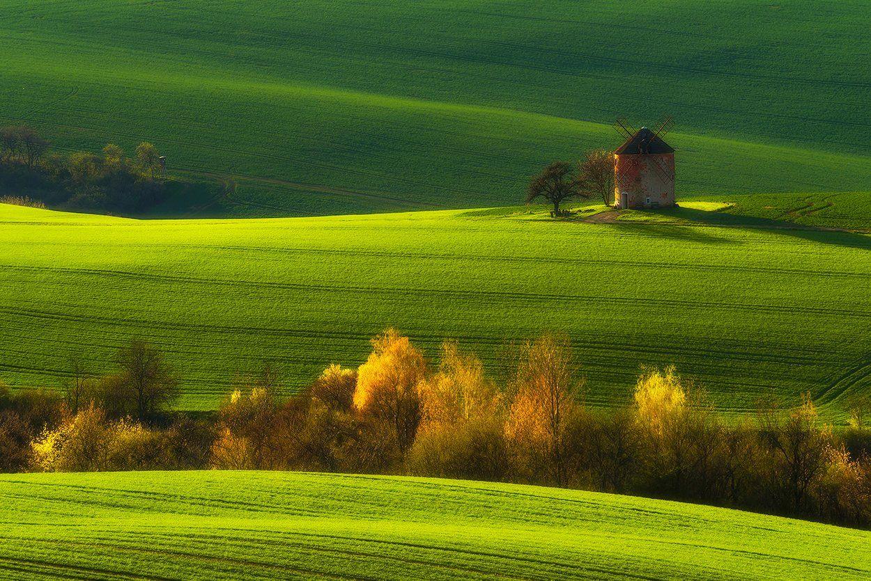 spring south moravia fields green , Robert Radomski