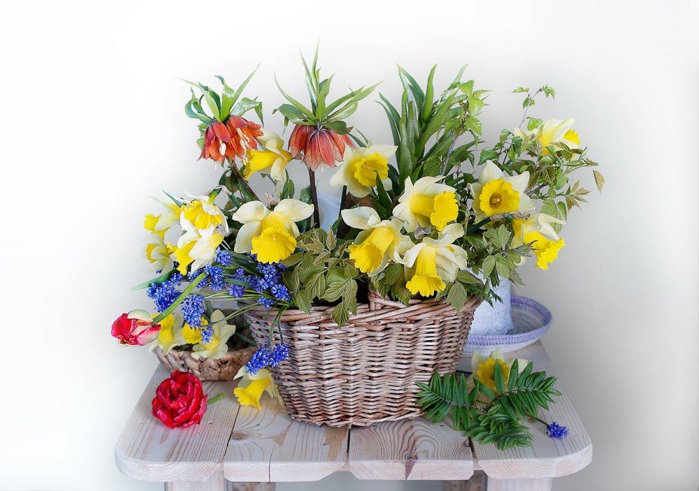 весна,весенний букет,натюрморт,, Вера  Павлухина