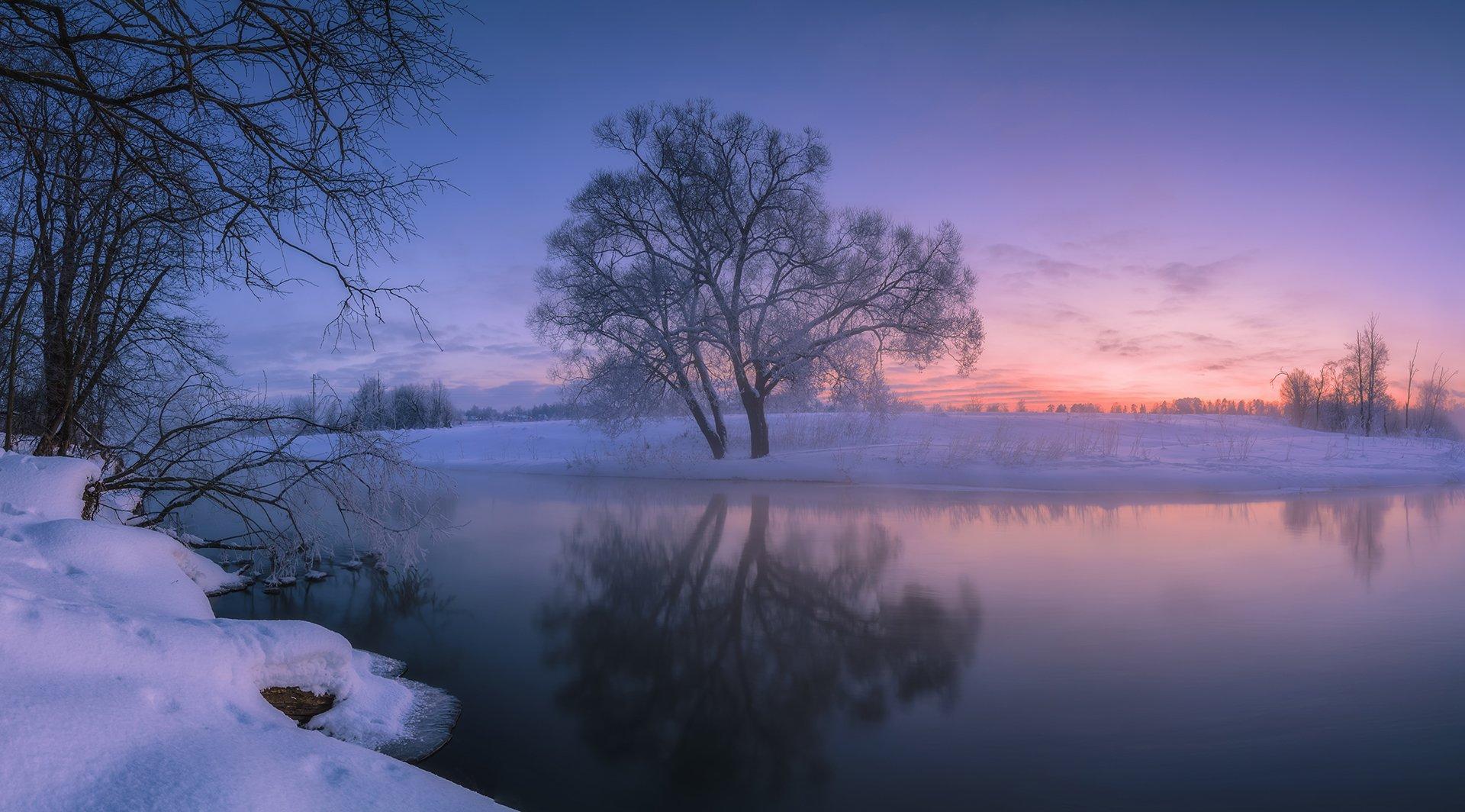 рассвет, утро, туман, мороз, природа, пейзаж, истра, река, небо, дерево, Виталий Левыкин