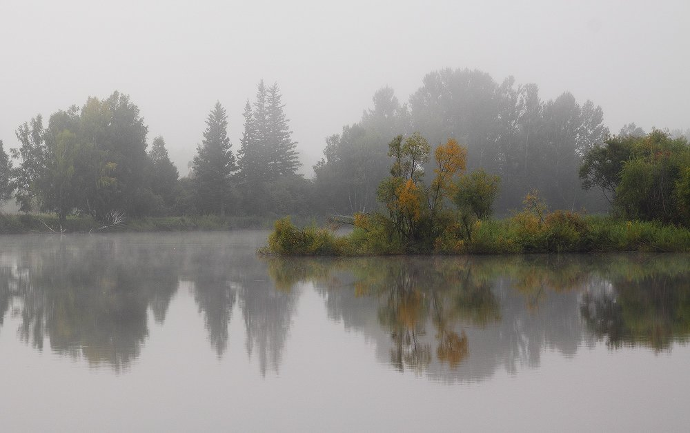 утро, туман, август, сентябрь, Николай Морский