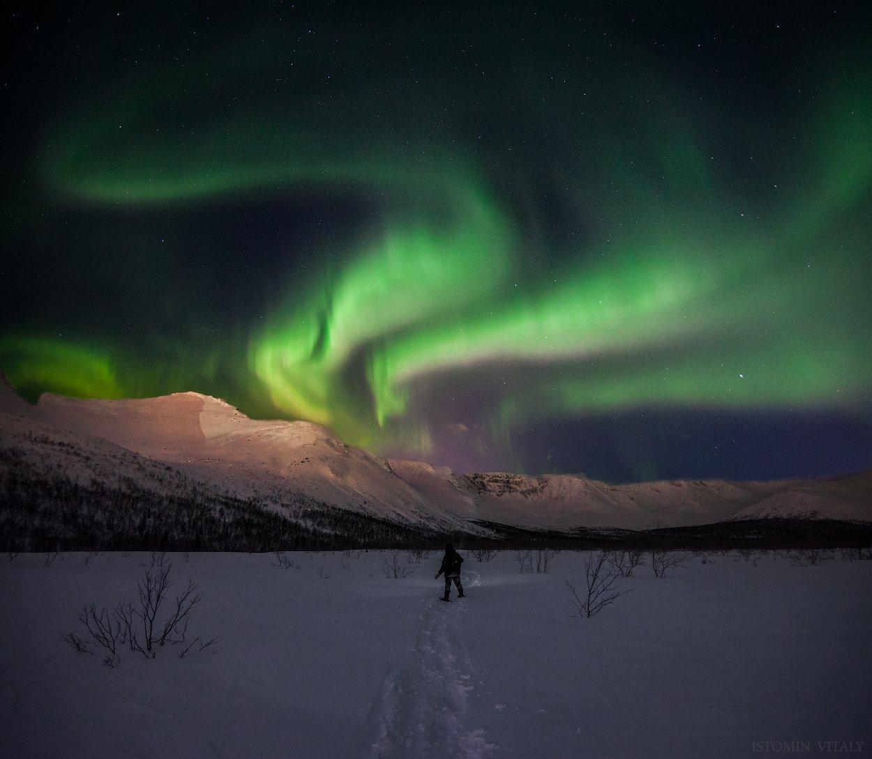 пейзаж,сияние,россия,хибины,ночь,небо,горы,снег,зима,человек, Истомин Виталий
