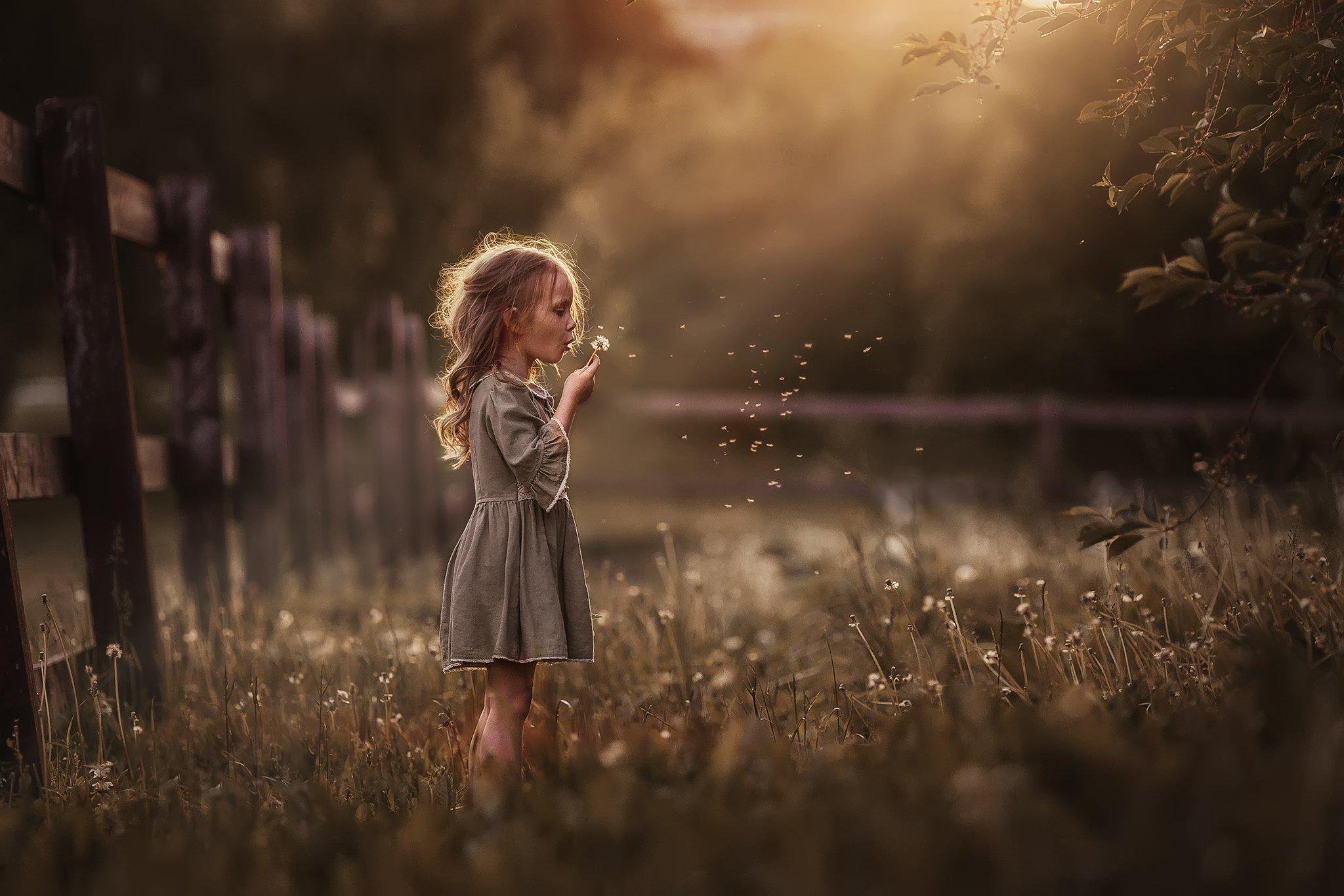лето, одуванчики, поле, луг, девочка, ребенок, детство, закат, москва, Марина Петра
