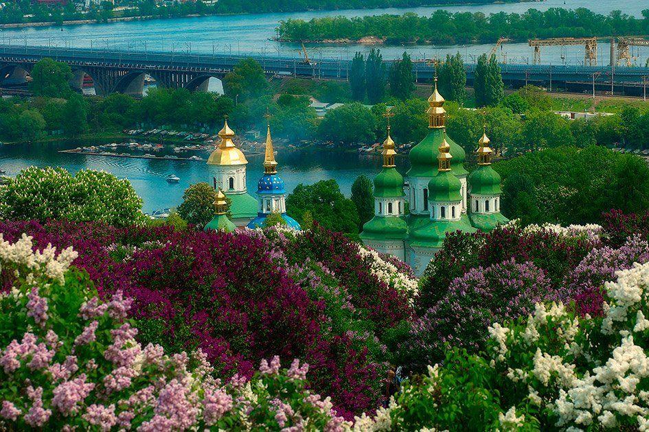 город, киев, церковь, сирень, река, Олег Скворцов