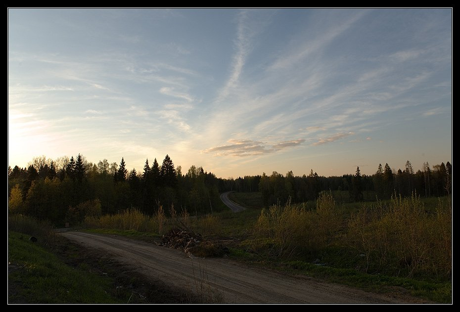 дороги дорога лес небо, Алексей Войницкий