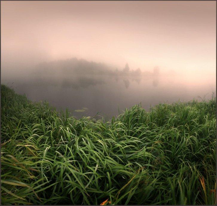 река, утро, Павлов Кирилл