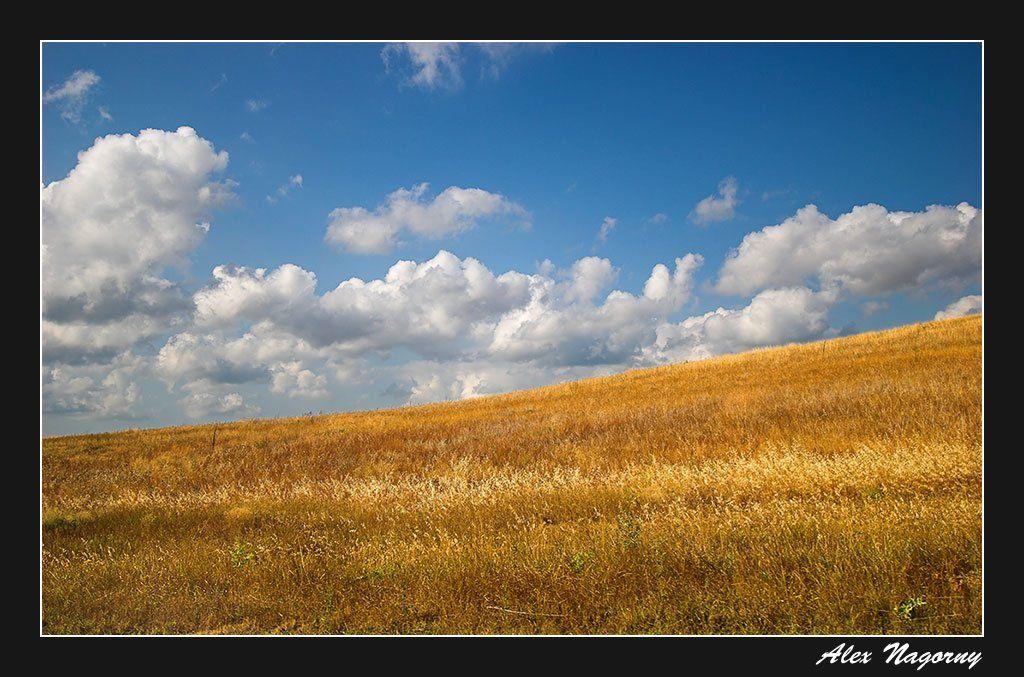 пейзаж, поле, небо, облака, український, прапор, хмари, ФотоМаньяк