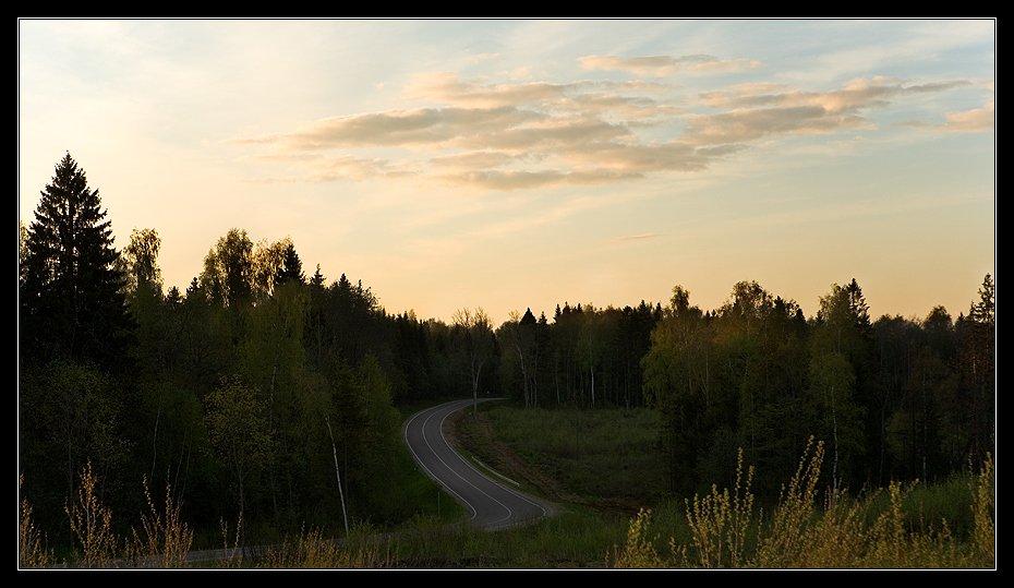 дорога лес небо, Алексей Войницкий