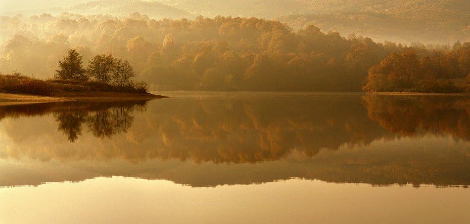 , Senna Ayd-Photographer