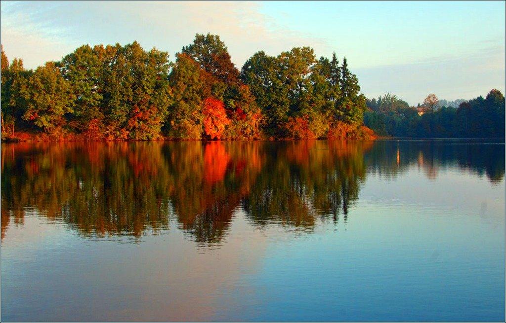 autumn,morning,, senato®
