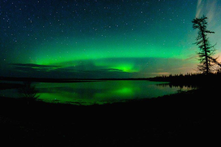 aurora borealis, север, ночной пейзаж, северное сияние, den-sau-pin