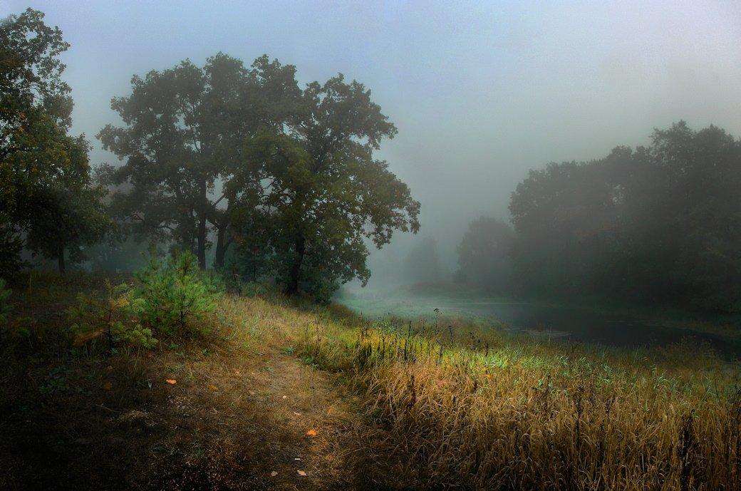 туман, осень, речка, Вячеслав Довыденко