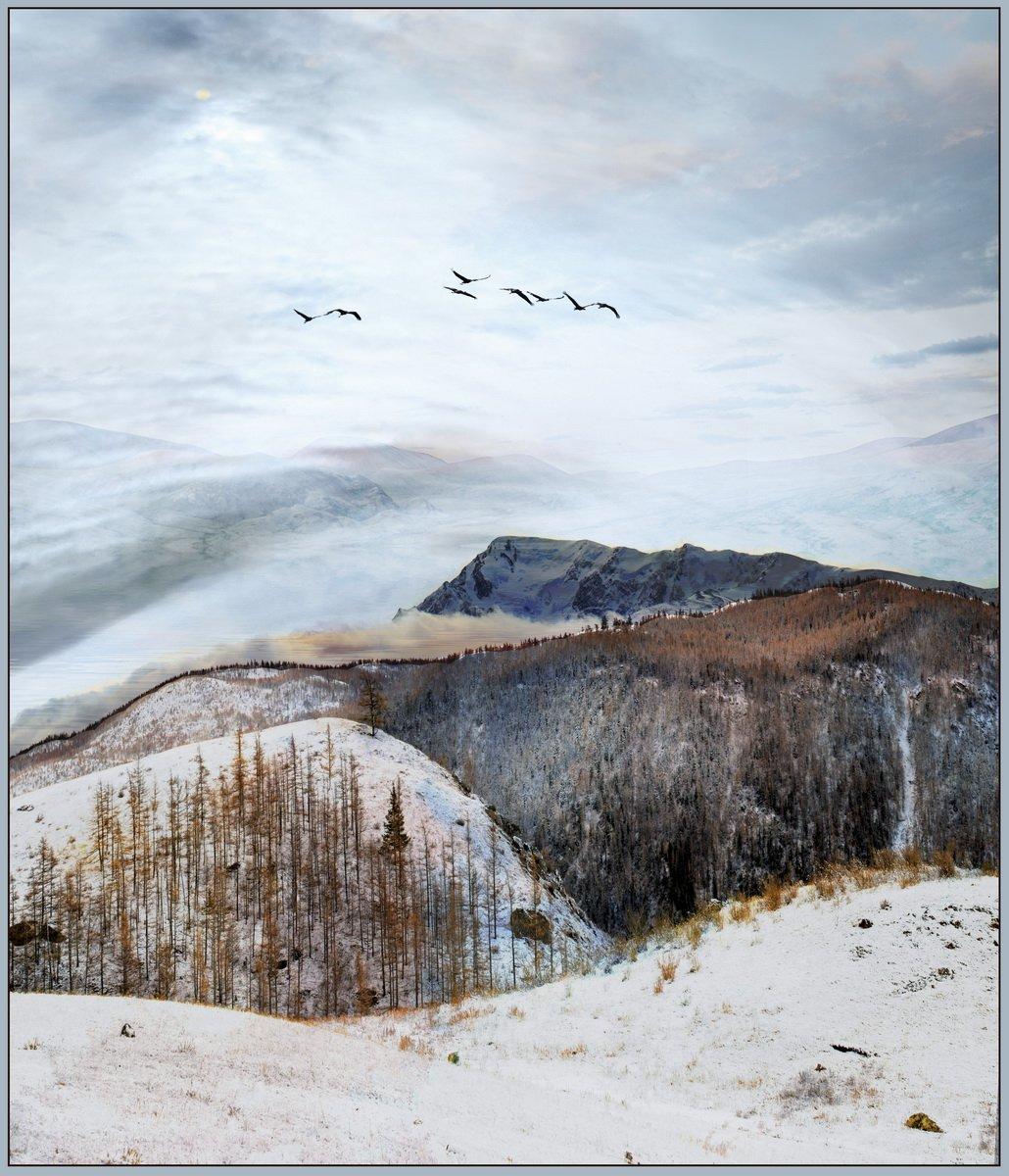 мажой, осень,снег,горы., aleks2020
