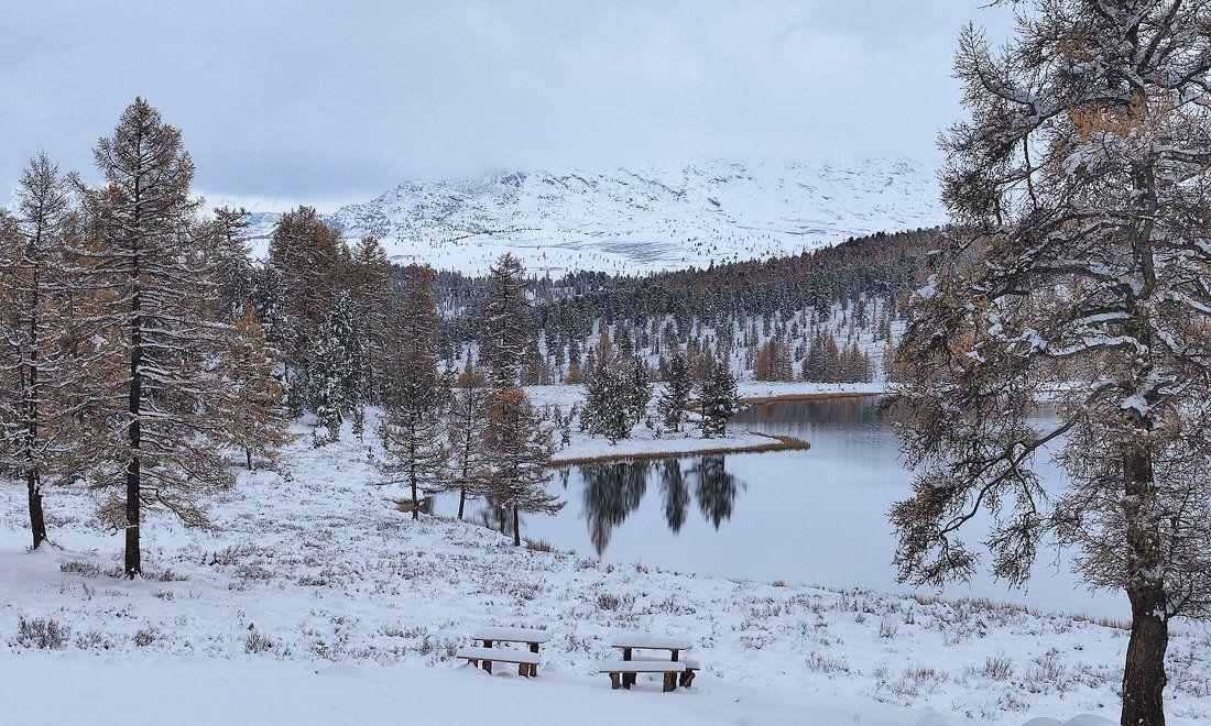 пейзаж, природа, снег, горы, алтай, осень, Sokolova Tatiana