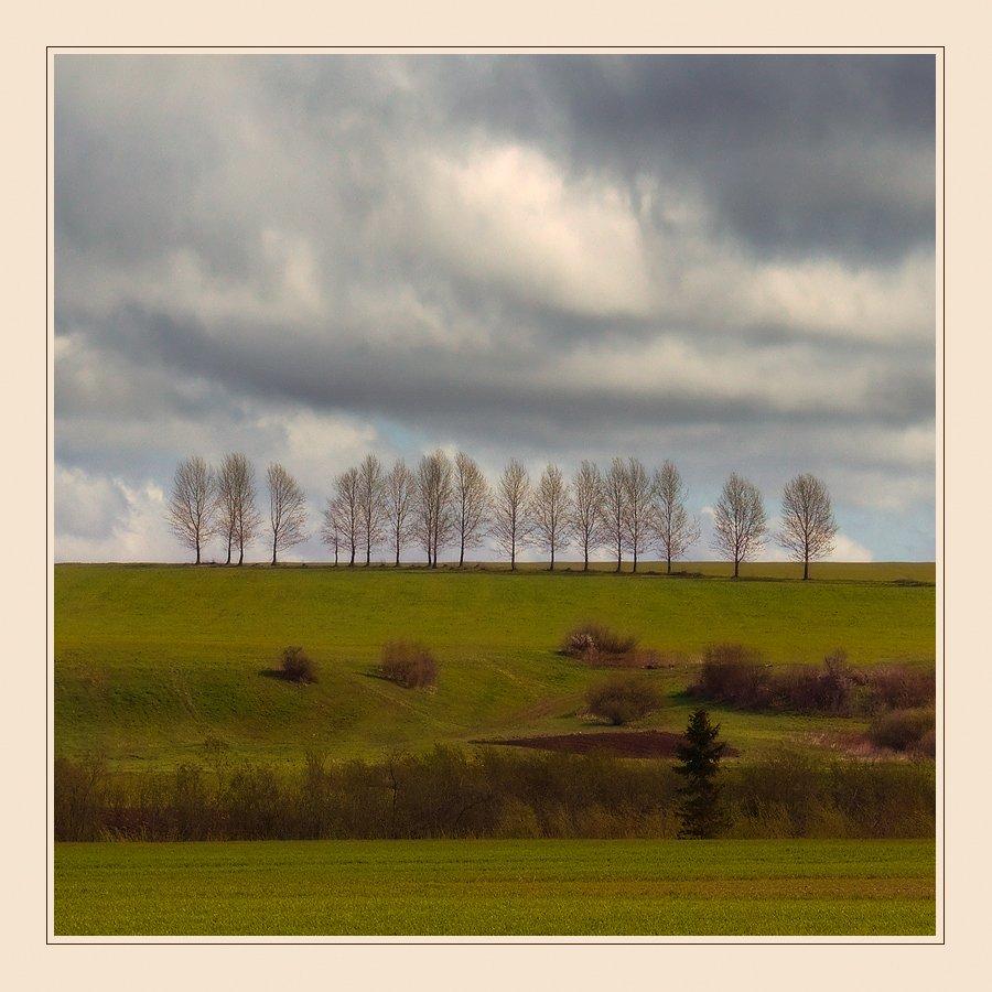 пейзаж, поля, деревья, небо, чехия, Oleg Dmitriev