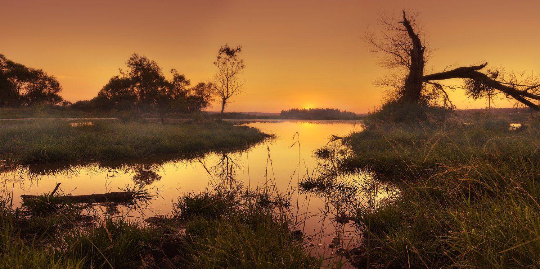 пейзаж, пруд, вечер, Oleg Dmitriev