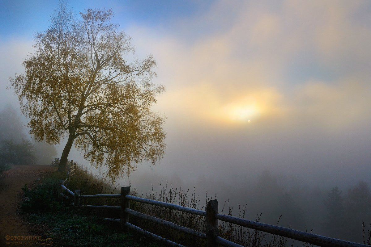 утро, туман, восход, плёс, плес, Вавилов Митя