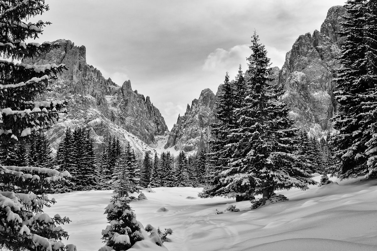 горы, снег, зима, деревья, Михаил Кристев