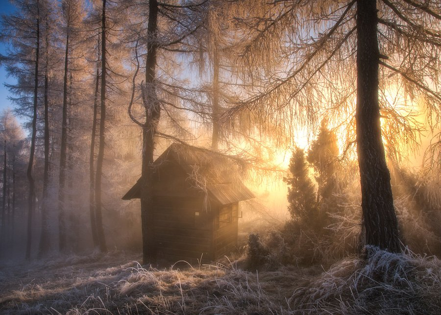 landscape,poland,home,sunrise,autumn,winter,light,fog,forest,architecture,nature, Marcin Kesek