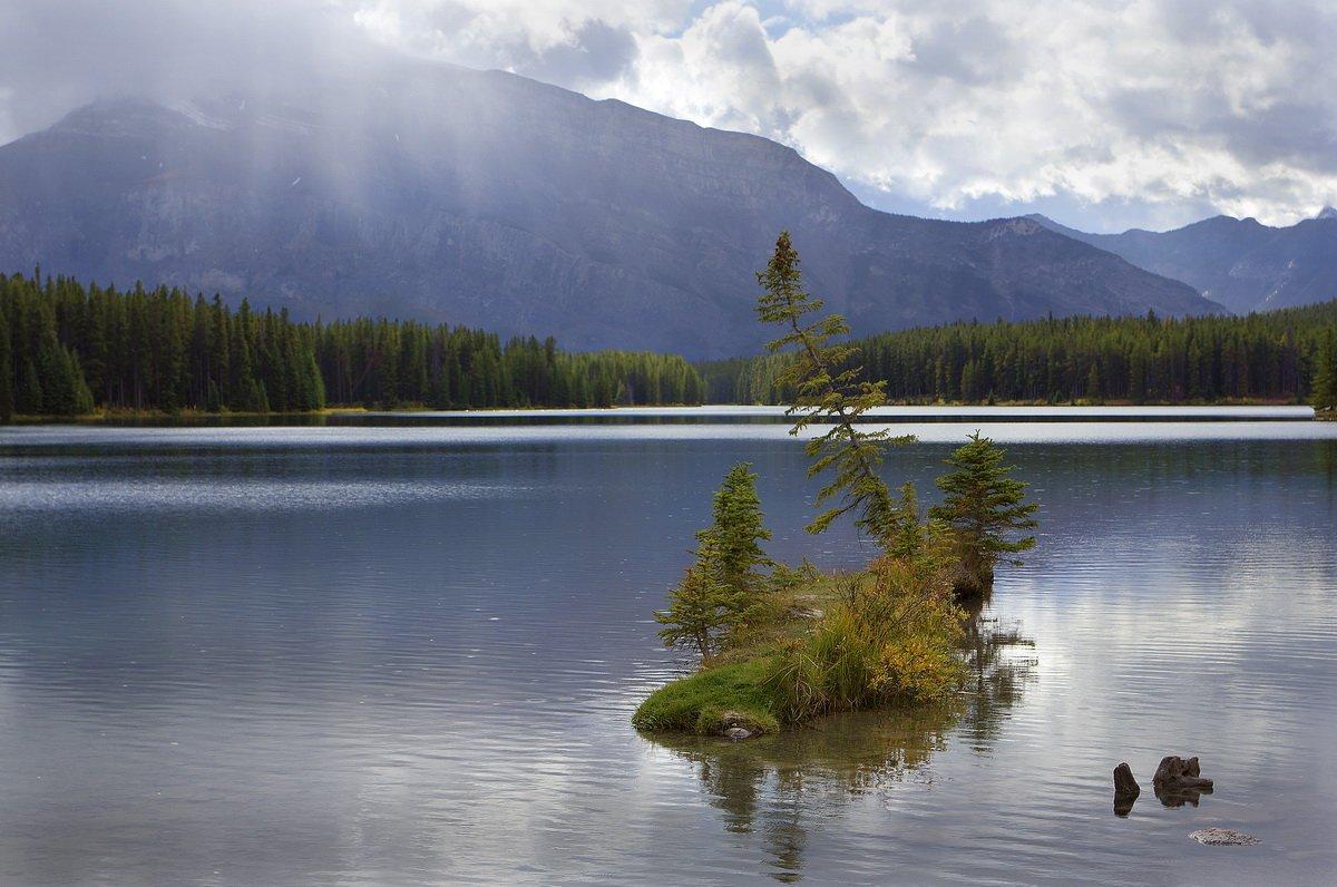 канада, озеро, ель, остров, Екатерина Богданова